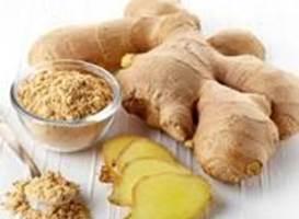 خواص زنجبیل برای سلامتی | گیاه دارویی زنجبیل