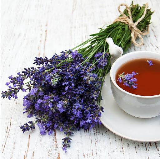 خواص و فواید گیاه دارویی اسطوخودوس برای سلامتی