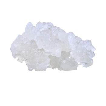 نبات سفید