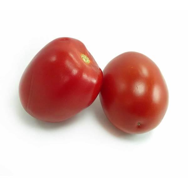گوجه فرنگی تازه